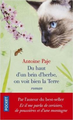 Du haut d'un brin d'herbe, on voit bien la terre – Antoine Paje