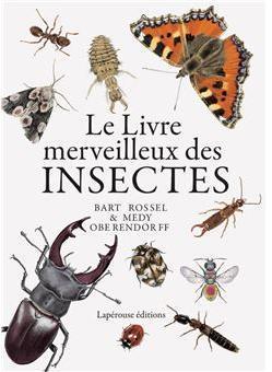 Le livre merveilleux des insectes par Rossel