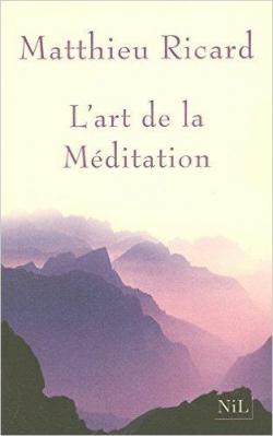 L Art De La Méditation