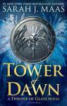 Tower of Dawn par Maas
