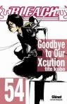 Bleach, tome 54 : Goodbye to our Xcution par Kubo
