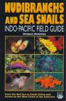 Nudibranchs and Sea Snails. Indo-Pacific Field Guide. par Debelius