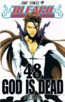 Bleach, Tome 48 : God is dead par Kubo
