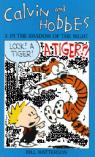 Calvin and Hobbes, tome 3 : in the shadow of the night par Watterson
