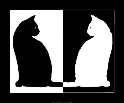noir-ou-blanc