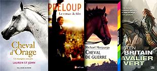 Romans Pour Les Ados Sur Les Chevaux Liste De 6 Livres