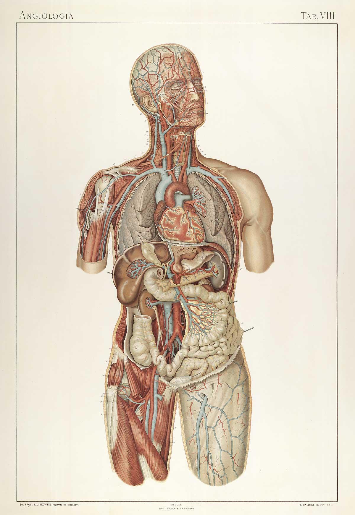 Medecine Litterature Liste De 42 Livres Babelio